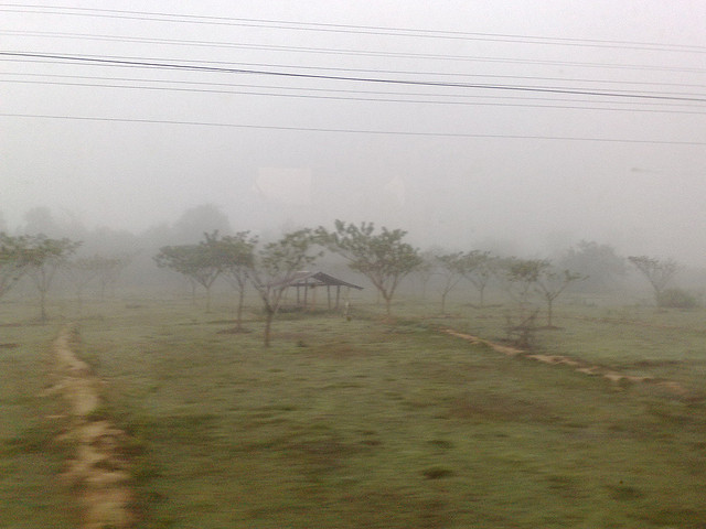Morning fog in the fields, view from the train, Northern Thailand