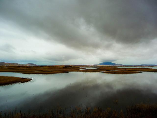 Rain - Klamath Basin National Wildlife Refuge